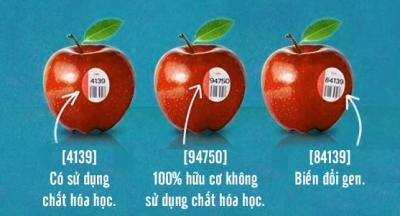 Giải mã ý nghĩa con số dán trên tem hoa quả nhập khẩu: có là thực phẩm sạch hay không là ở những con số này!