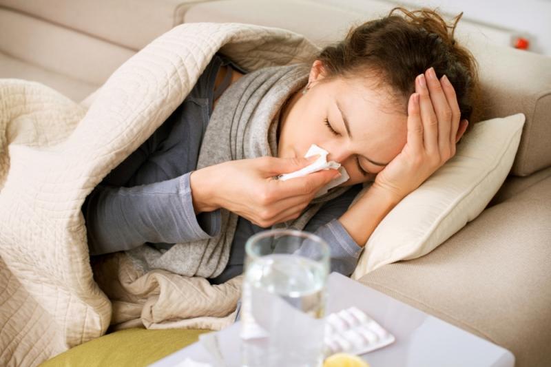 Phương pháp giải cảm cực nhanh với các bài thuốc từ lá tía tô