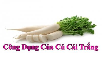 Bật mí 10 công dụng chữa bệnh bằng củ cải trắng hiệu quả