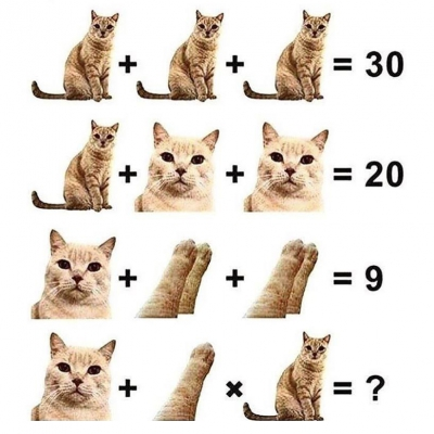Bài toán về boss mèo dễ ợt nhưng có tới 90% con sen tính sai